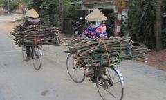 21 Vietnam